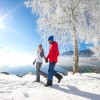 winter---winterspaziergang-entlang-des-zeller-sees